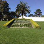 Quel est le rapport entre une fleur du Golden Gate Park et votre application ?