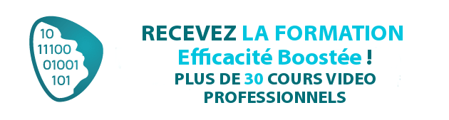 Formation Efficacit� Boost�e !